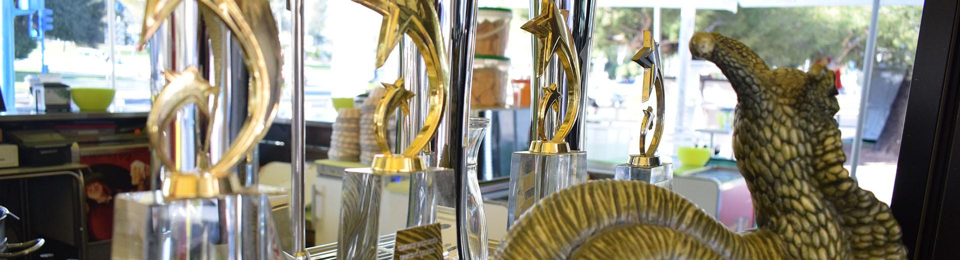1º Premio Caracol de Oro